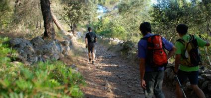 Mallorca visite mallorca turismo en mallorca archivo for Oficina turismo mallorca